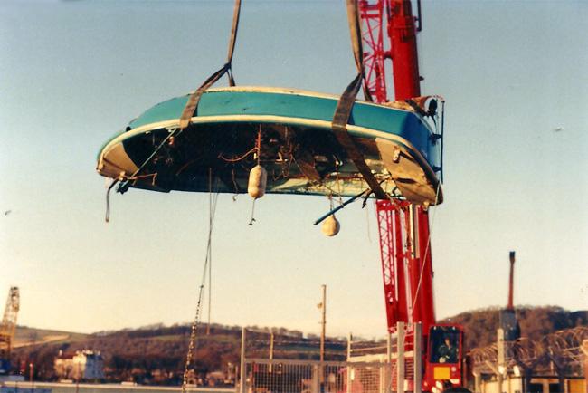 bluebird adrift